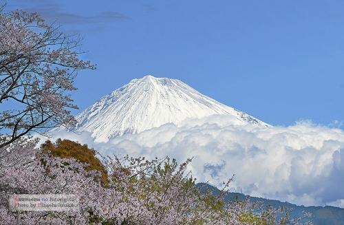 富士山 2019.4.11-2